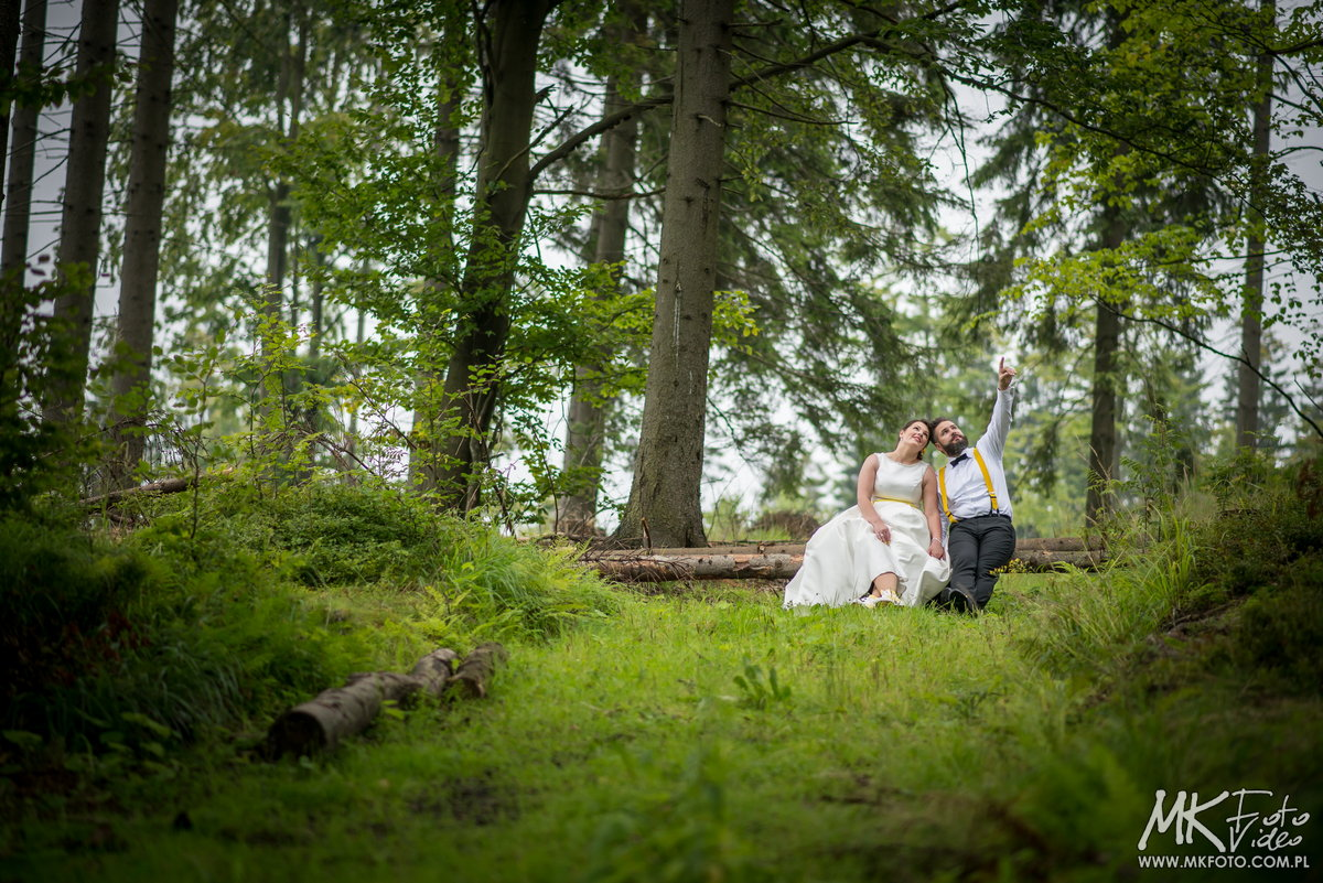 Zdjęcia plenerowe las